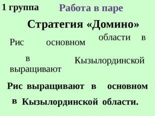 Стратегия «Домино» Работа в паре Рис выращивают в основном в Кызылординской о