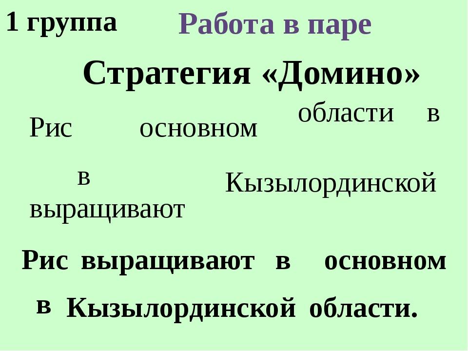 Стратегия «Домино» Работа в паре Рис выращивают в основном в Кызылординской о...