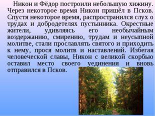 Никон и Фёдор построили небольшую хижину. Через некоторое время Никон пришёл