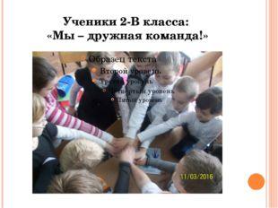 Ученики 2-В класса: «Мы – дружная команда!»