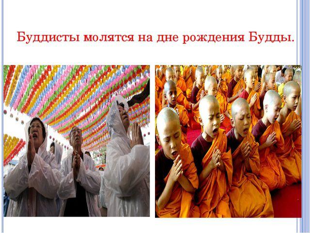 Буддисты молятся на дне рождения Будды.
