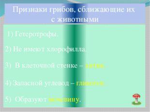 Признаки грибов, сближающие их с животными 1) Гетеротрофы. 2) Не имеют хлороф