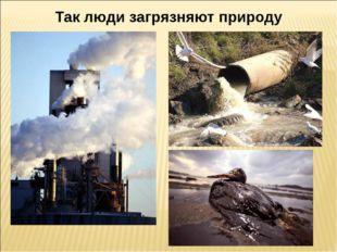 Так люди загрязняют природу