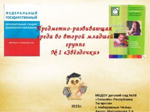МБДОУ детский сад №58 «Тополёк» Республика Татарстан г. Набережные Челны Авт