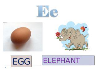 EGG ELEPHANT