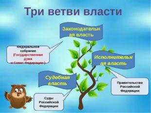 Три ветви власти Судебная власть Исполнительная власть Законодательная власть