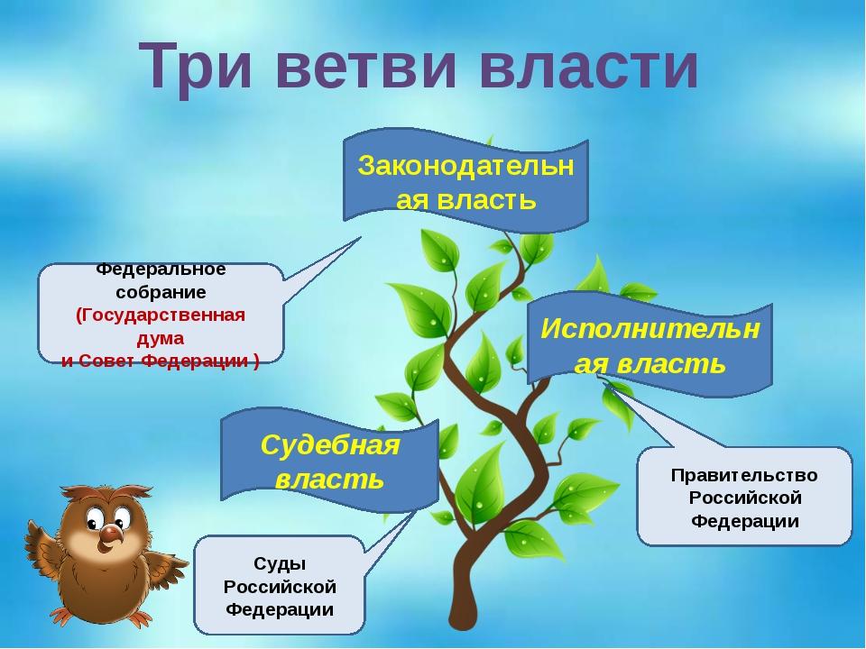 Три ветви власти Судебная власть Исполнительная власть Законодательная власть...