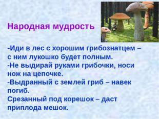 Народная мудрость -Иди в лес с хорошим грибознатцем – с ним лукошко будет пол