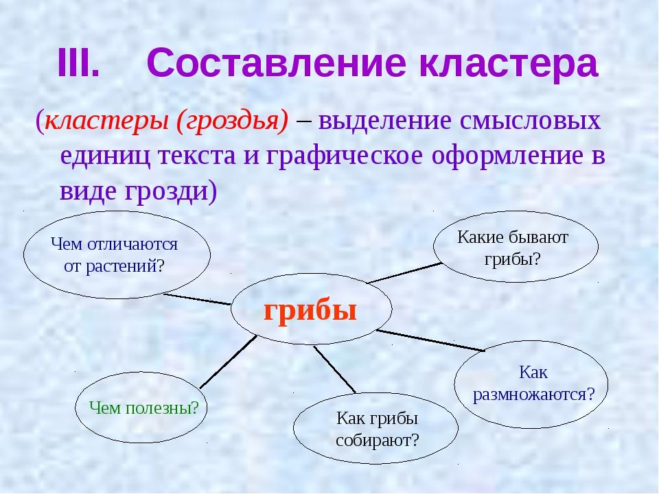 III. Составление кластера (кластеры (гроздья) – выделение смысловых единиц те...