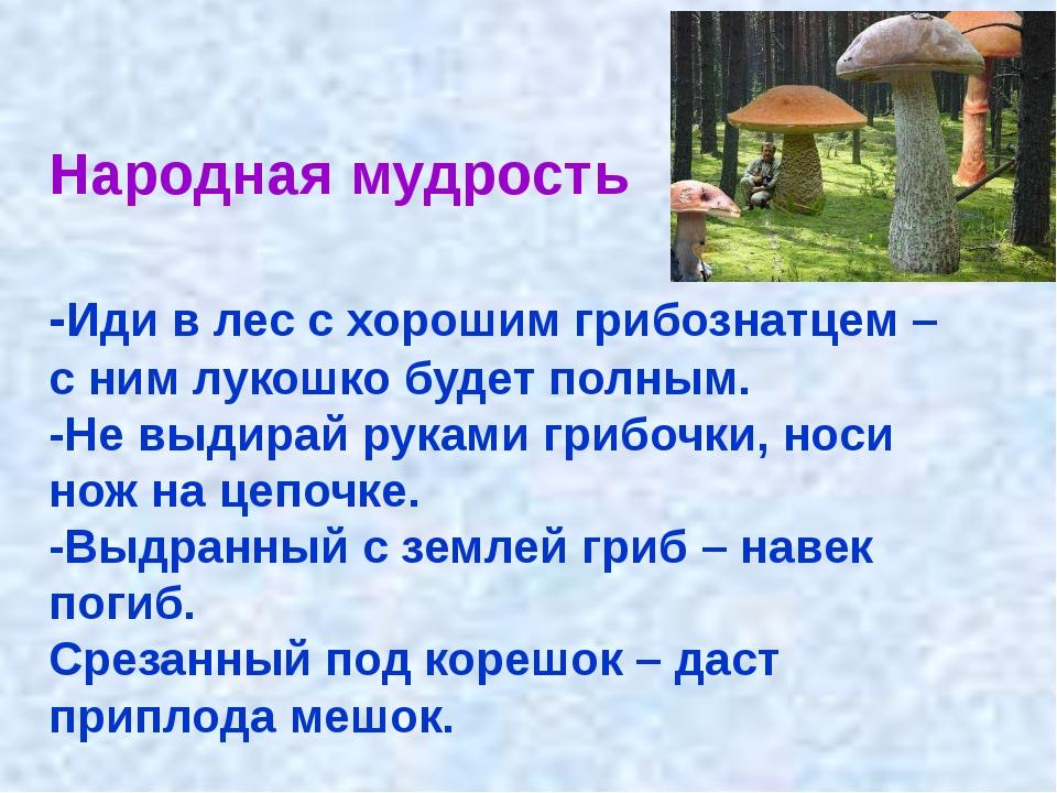 Народная мудрость -Иди в лес с хорошим грибознатцем – с ним лукошко будет пол...