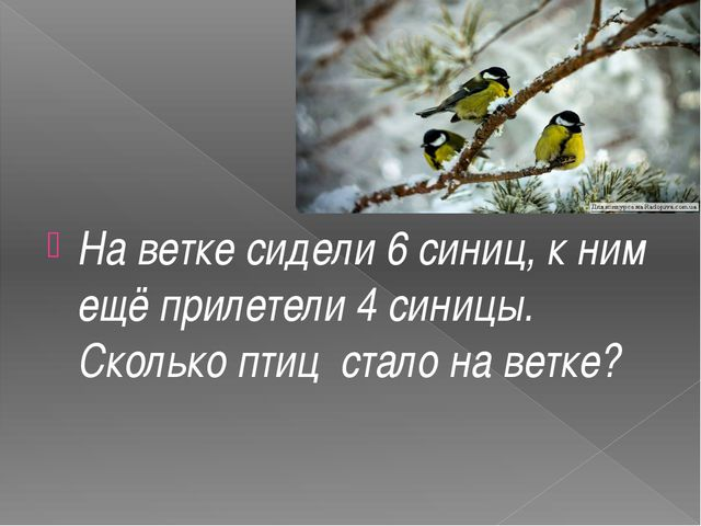 На ветке сидели 6 синиц, к ним ещё прилетели 4 синицы. Сколько птиц стало на...