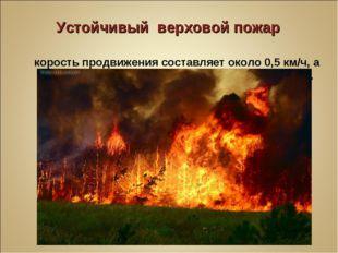 Устойчивый верховой пожар Скорость продвижения составляет около 0,5 км/ч, а в