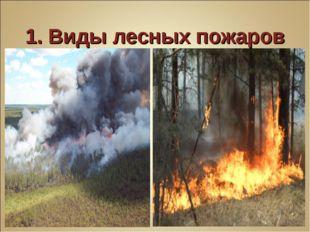 1. Виды лесных пожаров