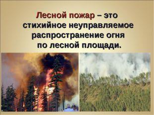 Лесной пожар – это стихийное неуправляемое распространение огня по лесной пло