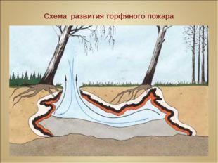 Схема развития торфяного пожара