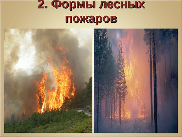 2. Формы лесных пожаров