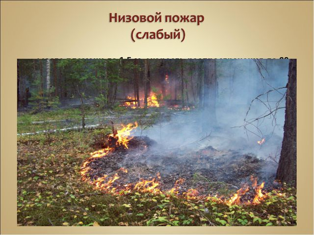 Высота пламени до 1,5 м, скорость распространения до 60 м/ч