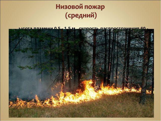 Высота пламени 0,5 - 1,5 м, скорость распространения 60 - 180 м/ч
