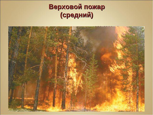 Верховой пожар (средний) Скорость распространения 180-6000 м/ч