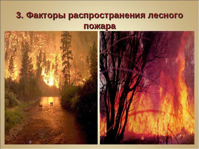 3. Факторы распространения лесного пожара