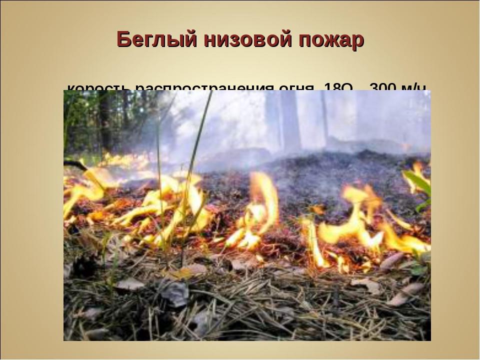 Беглый низовой пожар Скорость распространения огня 18O…300 м/ч