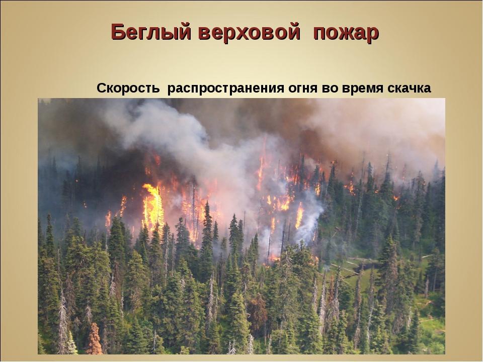 Беглый верховой пожар Скорость распространения огня во время скачка по кро...