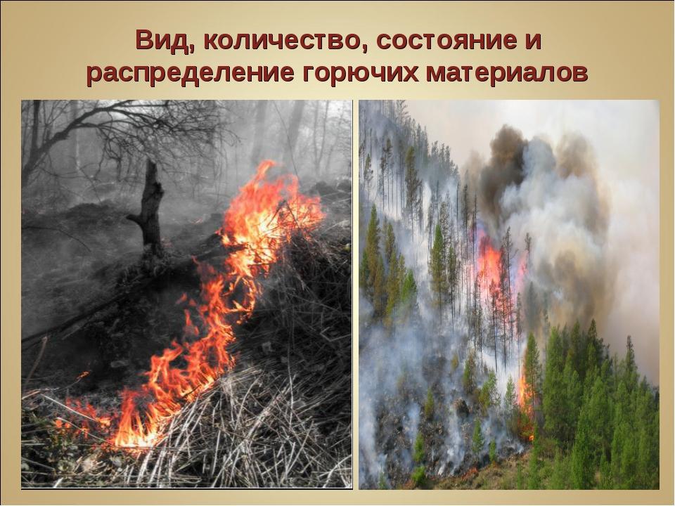 Вид, количество, состояние и распределение горючих материалов