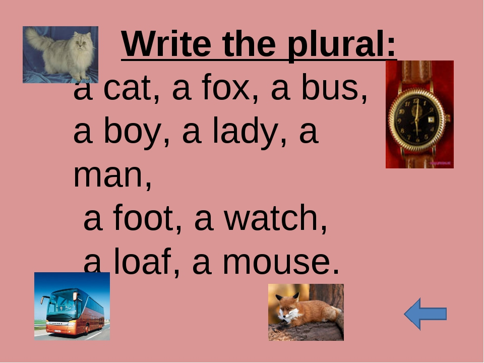 Write the plural: a cat, a fox, a bus, a boy, a lady, a man, a foot, a watch,...