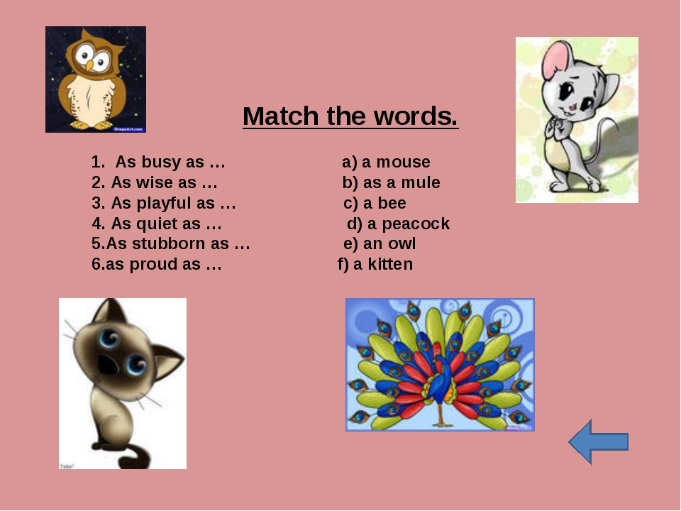 Match the words. 1. As busy as …	 a) a mouse	 2. As wise as …	 b) as a mule...