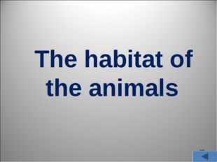* The habitat of the animals