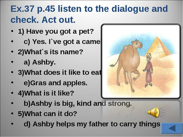 Ex.37 p.45 listen to the dialogue and check. Act out. 1) Have you got a pet?...