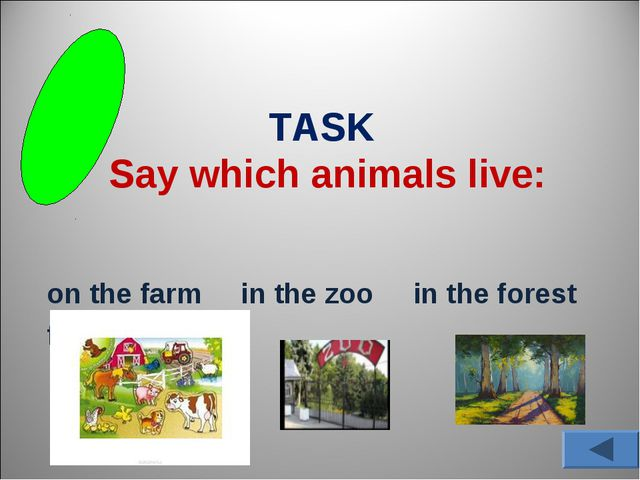 TASK Say which animals live: on the farm in the zoo in the forest forest forest