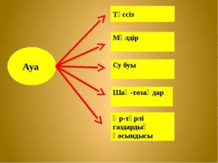 Ауа Түссіз Мөлдір Су буы Шаң-тозаңдар Әр-түрлі газдардың қосындысы