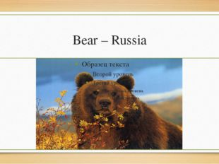 Bear – Russia