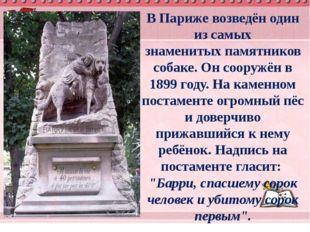 ВПарижевозведён один из самых знаменитыхпамятников собаке. Он сооружён в