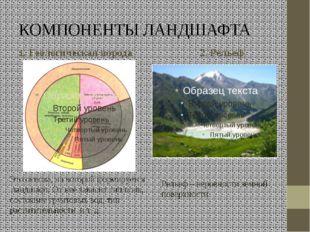 КОМПОНЕНТЫ ЛАНДШАФТА 1. Геологическая порода 2. Рельеф Это основа, на которой