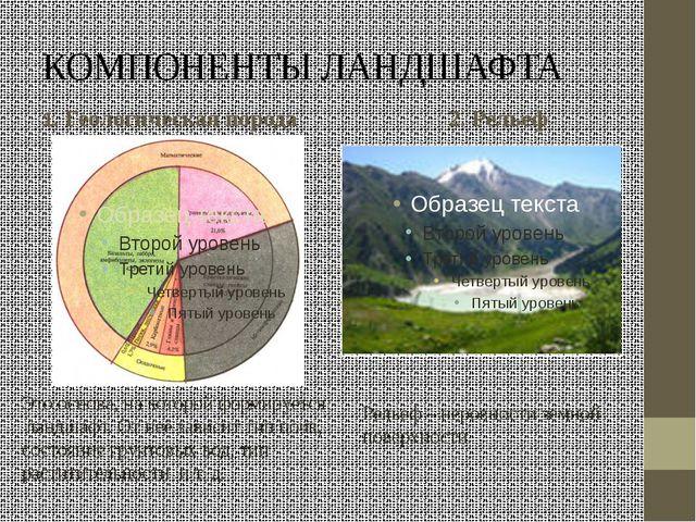 КОМПОНЕНТЫ ЛАНДШАФТА 1. Геологическая порода 2. Рельеф Это основа, на которой...