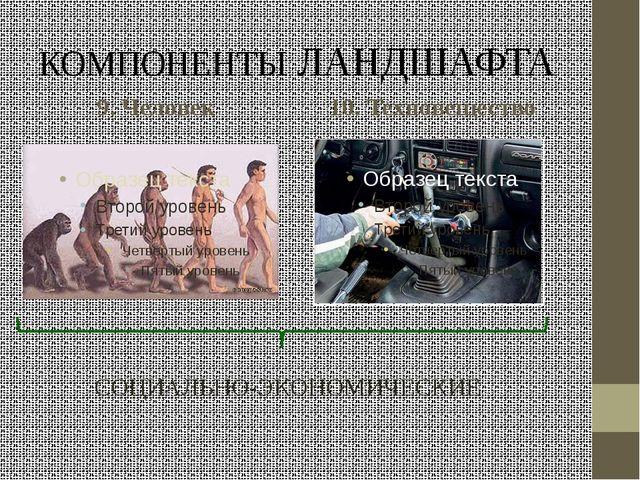 КОМПОНЕНТЫ ЛАНДШАФТА 9. Человек 10. Техновещество СОЦИАЛЬНО-ЭКОНОМИЧЕСКИЕ
