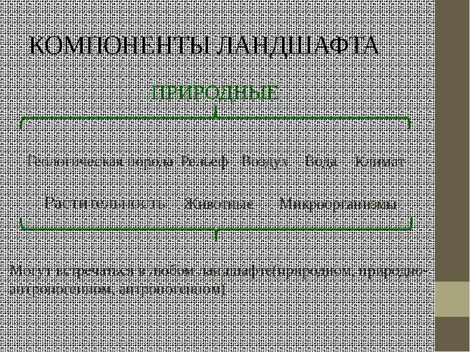 КОМПОНЕНТЫ ЛАНДШАФТА ПРИРОДНЫЕ Геологическая порода Рельеф Вода Воздух Климат...