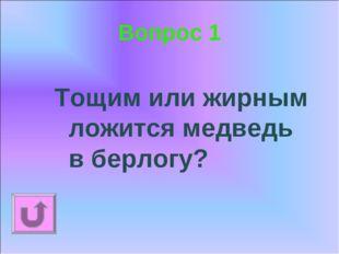 Вопрос 1 Тощим или жирным ложится медведь в берлогу?
