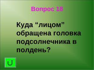 """Вопрос 18 Куда """"лицом"""" обращена головка подсолнечника в полдень?"""