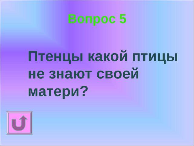 Вопрос 5 Птенцы какой птицы не знают своей матери?