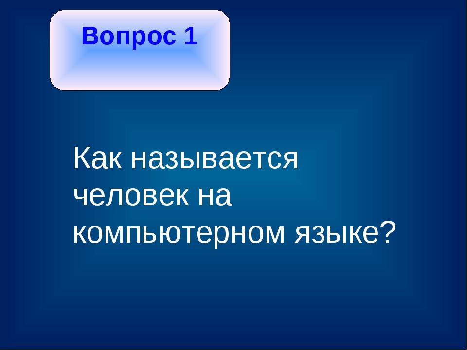 Вопрос 1 Как называется человек на компьютерном языке?