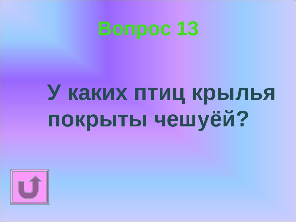 Вопрос 13 У каких птиц крылья покрыты чешуёй?