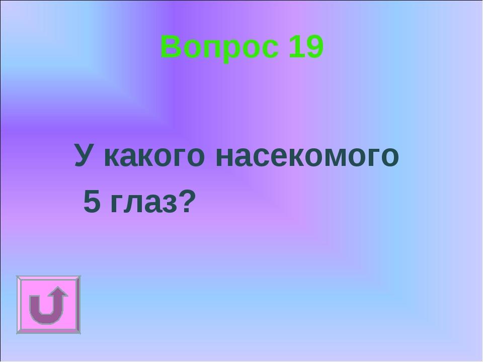 Вопрос 19 У какого насекомого 5 глаз?