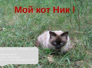 Мой кот Ник ! Работу выполнила: ученица 3 б класса МОУ Гимназия №58 Староверо