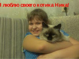 Я люблю своего котика Ника!