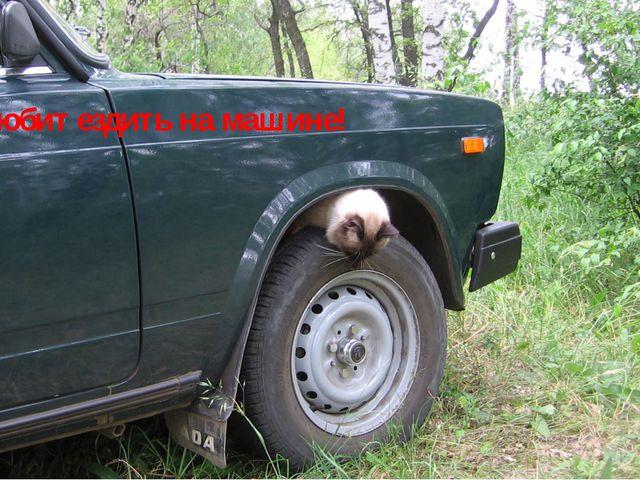 Ник любит ездить на машине!