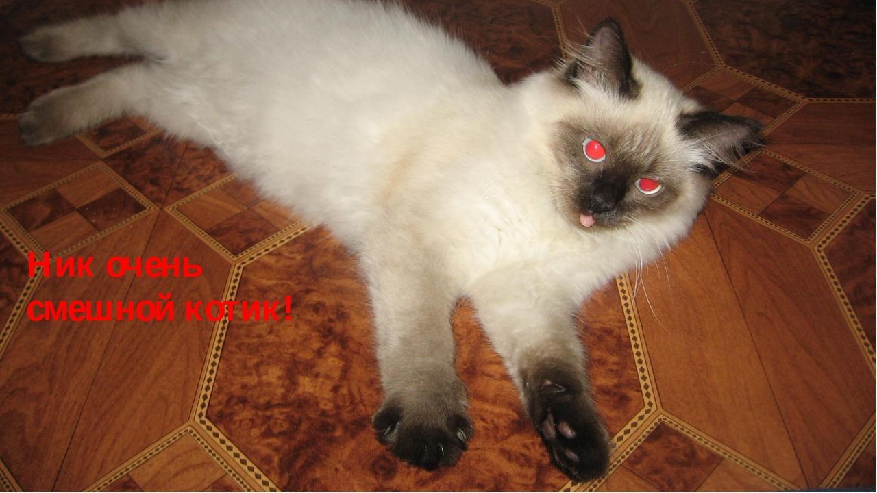 Ник очень смешной котик!