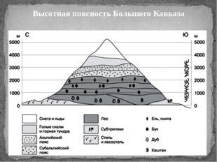 Высотная поясность Большого Кавказа